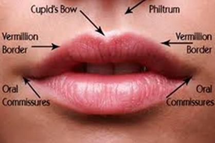 Lip Augmentation in Mumbai, India