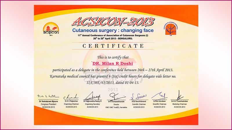 2013-ACSICON